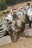 San Dimas Bull Riding Stock Photos