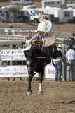 San Dimas Rodeo Saddle Bronc Royalty Free Stock Photography