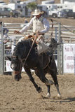 San Dimas Rodeo Saddle Bronc Royalty Free Stock Photo