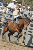 San Dimas Rodeo Saddle Bronc Royalty Free Stock Image