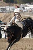 San Dimas Rodeo Saddle Bronc Stock Photography