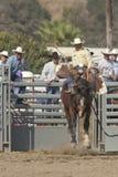 San Dimas Rodeo Saddle Bronc Royalty Free Stock Photos