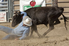 San Dimas Rodeo Steer Wrestling Royalty Free Stock Images