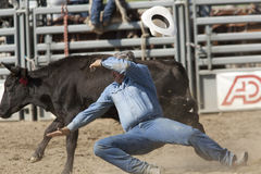 San Dimas Rodeo Steer Wrestling Stock Photography