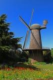 san för park för holländsk francisco port guld- windmill Arkivbilder