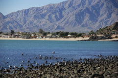 San Felipe, north end of town Stock Photos