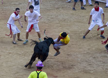 San fermin 2013 Stock Photos
