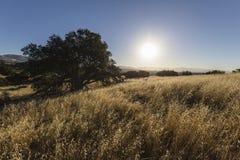 San Fernando Valley Morning Royalty Free Stock Photography