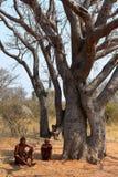 San folk i Namibia arkivbild