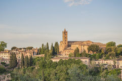 San Francesco, a church in Siena, Tuscany, Italy. Stock Image