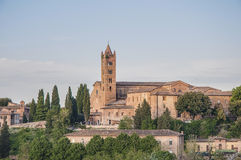 San Francesco, a church in Siena, Tuscany, Italy. Stock Photo