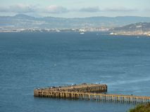 San Francisco Bay Photo stock