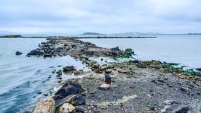 San Francisco Bay at Albany Bulb. A ruined jetty at Albany Bulb in San Francisco Bay, Albany, California Stock Photos