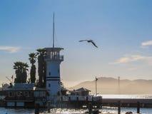 San Francisco Bay Area Lighthouse royaltyfri bild