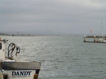 San Francisco bay area ocean view. Shoreline Stock Image
