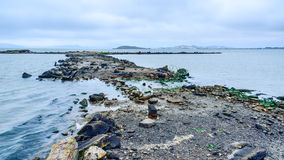 San Francisco Bay bij de Bol van Albany Stock Foto's
