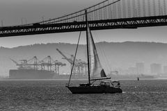 San Francisco Bay bridge sailboat from Pier 7 California Royalty Free Stock Images