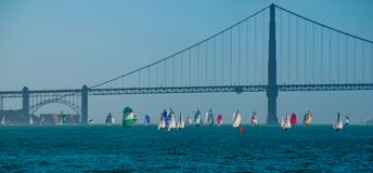 San Francisco Bay Golden Gate Regatta stock afbeelding