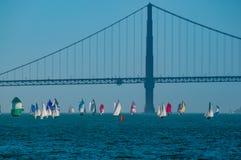 San Francisco Bay Golden Gate Regatta royalty-vrije stock afbeeldingen