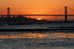 San Francisco Bay Sunset Seen del puerto de Oakland Imagen de archivo libre de regalías