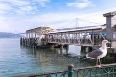 San Francisco Bay, terminal de transbordadores y el puente de la bahía Fotos de archivo libres de regalías