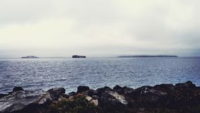 San Francisco bay widok zdjęcie royalty free