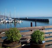 San Francisco Boat Marina Stockbild