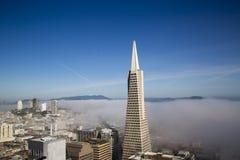 Areal beskåda på den Transamerica pyramiden, och staden av San Francisco täckte vid tät dimma Arkivfoto