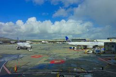 SAN FRANCISCO, CALIFORNIA - APRIL 13, 2014: United Airlines planes at the Terminal 3 in San Francisco International Stock Images