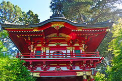 San Francisco, Japanese Tea Garden, Tea House, foliage, tree, maple, Golden Gate Park, green, nature, California, United States. The Tea House in the Japanese Stock Photo