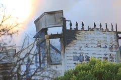 San Francisco - case su fuoco Immagine Stock