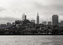 San Francisco City royaltyfri fotografi