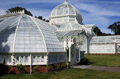 San Francisco Conservatory of Flowers Stock Photos