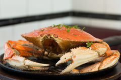 San Francisco Dungeness crab Stock Images