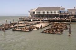 San Francisco - embarcadero 39 Fotografía de archivo libre de regalías