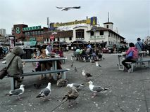San Francisco, Fishermans-Kai lizenzfreies stockbild