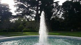 San Francisco fountain. Water gardens trees Royalty Free Stock Photography