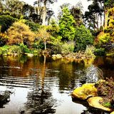 San Francisco. Gardens lake relax stock photography