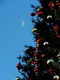 San Francisco Holiday Reflection Royalty Free Stock Photo