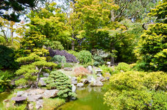 San Francisco Japanese Garden photographie stock