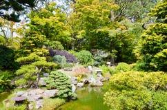 San Francisco Japanese Garden Stock Photography