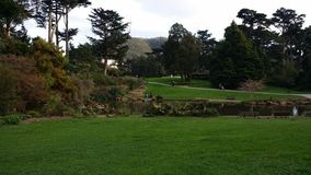 San Francisco. Japanese garden morning royalty free stock photo