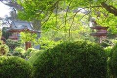 San Francisco Japanse Theetuin in Gouden Gte-Park pagodas stock foto's