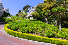 San Francisco Lombard Street gardens California Royalty Free Stock Photography
