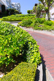 San Francisco Lombard Street gardens California Royalty Free Stock Images
