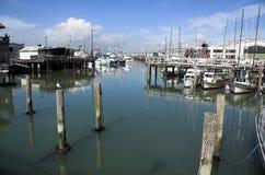 San Francisco marina royalty free stock photo