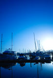 San Francisco Marina Royalty Free Stock Photos