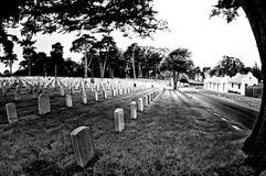 San Francisco National Cemetery Royalty Free Stock Photography