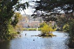San Francisco naturliv Royaltyfri Foto