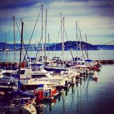 San Francisco. Nice marina daytime Royalty Free Stock Image